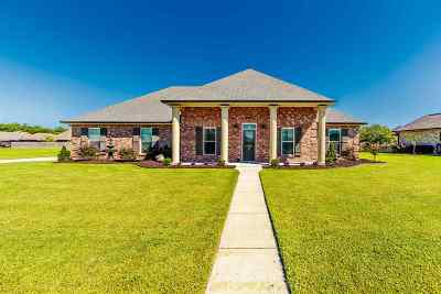 Gray Single Family Home For Sale: 246 Beulah Louise Drive