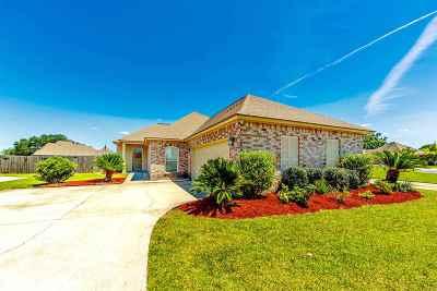 Thibodaux Single Family Home For Sale: 196 Lake Accardo Avenue