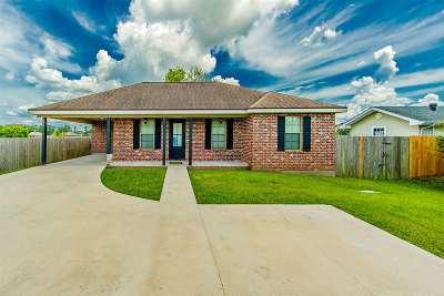 Houma Single Family Home For Sale: 6719 Willie Lou Avenue
