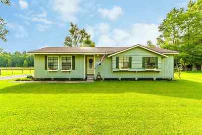 Houma Single Family Home For Sale: 214 Lirette Street