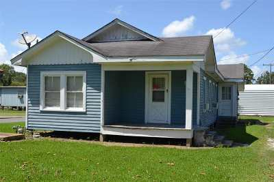 Larose Single Family Home For Sale: 163 Service Road