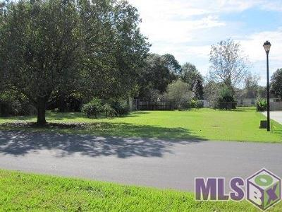 Brusly Residential Lots & Land For Sale: 1483 Orleans Quarters Dr