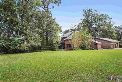 Baton Rouge Single Family Home For Sale: 16819 Cherry Bark Dr