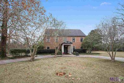Baton Rouge Single Family Home For Sale: 6222 Summer Lake Dr