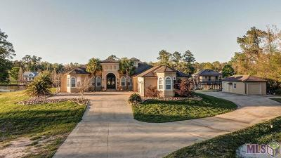 Prairieville Single Family Home For Sale: 17162 Summerfield South Rd