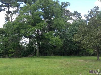 Denham Springs Residential Lots & Land For Sale: 2734 S Range Ave