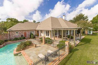 Baton Rouge Single Family Home For Sale: 19123 Pinnacle