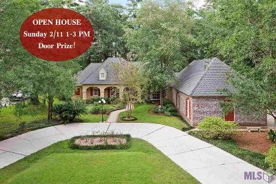 Baton Rouge Single Family Home For Sale: 19123 Hickory Bay Ct