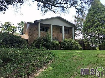 Denham Springs Single Family Home For Sale: 32483 La Hwy 16