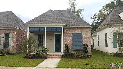Central Single Family Home For Sale: 12815 Finn Way