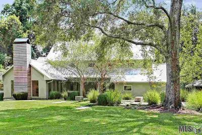 Baton Rouge Single Family Home For Sale: 9770 Highland Rd