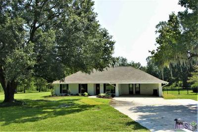 Prairieville Single Family Home For Sale: 17450 Manchac Acres Rd