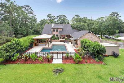 Denham Springs Single Family Home For Sale: 1187 S River Rd