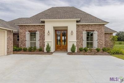 Denham Springs Single Family Home For Sale: 7363 Effie Dr