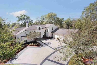 Baton Rouge Single Family Home For Sale: 19210 S Lakeway Ave