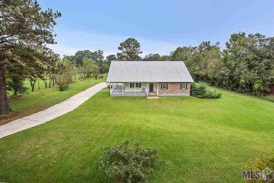 Denham Springs Single Family Home For Sale: 1535 Norma Dr