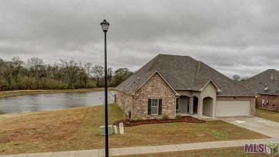 Prairieville Single Family Home For Sale: 16157 Timberstone Dr