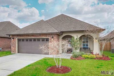 Prairieville Single Family Home For Sale: 17018 Enterprise Ave