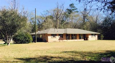 Denham Springs Single Family Home For Sale: 30766 Old River Rd