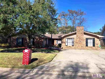 Morgan City Single Family Home For Sale: 1209 Fig St