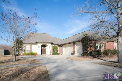 Baton Rouge Single Family Home For Sale: 10753 Hilltree Dr