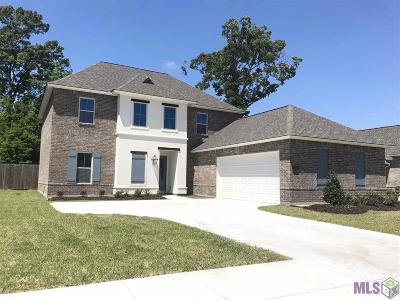 Prairieville Single Family Home For Sale: 15051 Germany Oaks Blvd