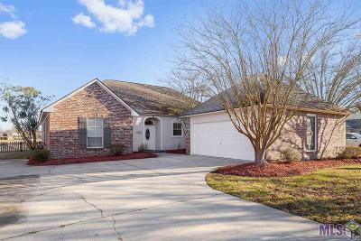 Baton Rouge Single Family Home For Sale: 17811 Lake Iris Ave