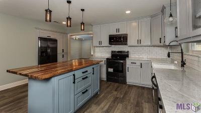 Denham Springs Single Family Home For Sale: 23024 La Hwy 16