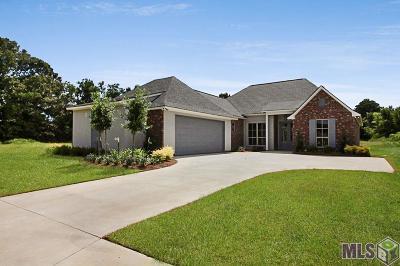 Prairieville Single Family Home For Sale: 14053 Doe Run Dr