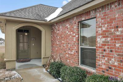 Baton Rouge Single Family Home For Sale: 3209 Northlake Ave