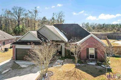 Denham Springs Single Family Home For Sale: 13966 Arbor Walk Dr