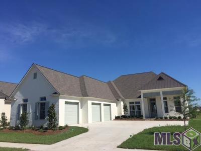 Baton Rouge Single Family Home For Sale: 2849 Lexington Lakes Ave