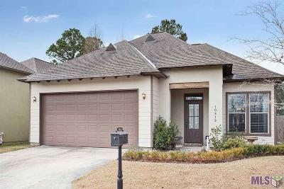 Baton Rouge Single Family Home For Sale: 10819 Grace Ln