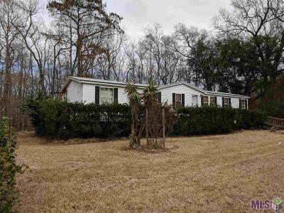 Prairieville Single Family Home For Sale: 18739 Manchac Point Rd