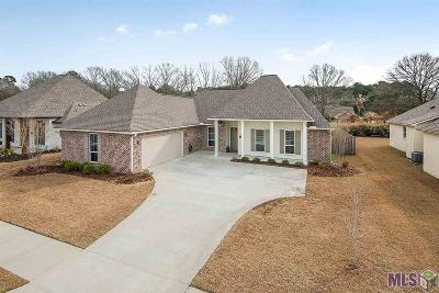 Central Single Family Home For Sale: 15965 Redstone Dr