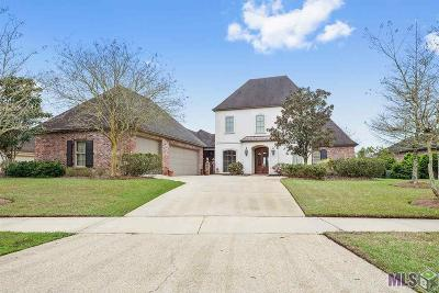 Baton Rouge Single Family Home For Sale: 19528 Southern Hills Ave