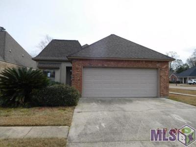 Denham Springs Single Family Home For Sale: 30078 Irene Kennard Ave