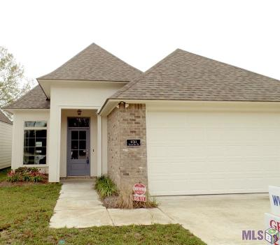 Baton Rouge Single Family Home For Sale: 6511 Silver Oak Dr