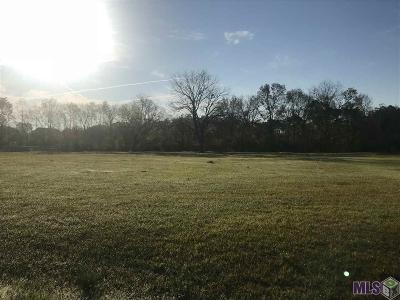 Prairieville Residential Lots & Land For Sale: 16520 New Horizon Ln