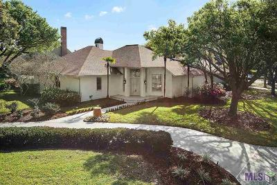 Baton Rouge Single Family Home For Sale: 19211 S Lakeway Ave