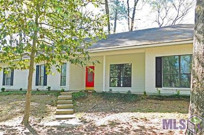 Baton Rouge Single Family Home For Sale: 744 Riverview Dr