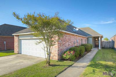 Baton Rouge Single Family Home For Sale: 3842 Southpass Ave