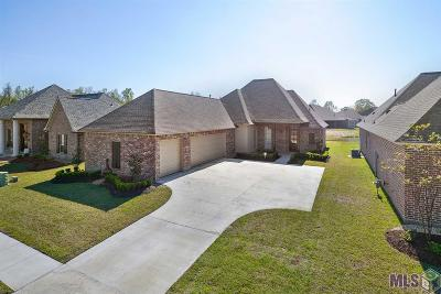 Prairieville Single Family Home For Sale: 14091 Twin Lakes Dr
