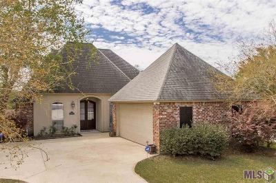 Baton Rouge Single Family Home For Sale: 10146 Springtree Ave
