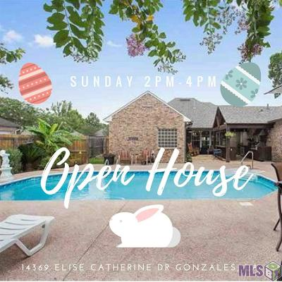 Gonzales Single Family Home For Sale: 14369 Elise Catherine Dr