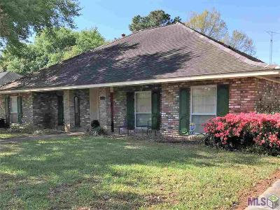 Baton Rouge Single Family Home For Sale: 1338 Oakley Dr