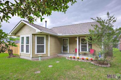 Baton Rouge Single Family Home For Sale: 17133 Strain Rd