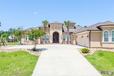 Prairieville Single Family Home For Sale: 17162 Summerfield South Rd