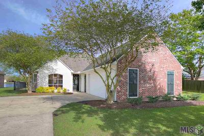 Baton Rouge Single Family Home For Sale: 1355 Springlake Dr