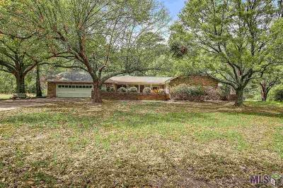 Denham Springs Single Family Home For Sale: 26077 Walker South Rd